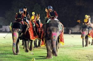 Playing Elephant Polo in Jaipur Playground